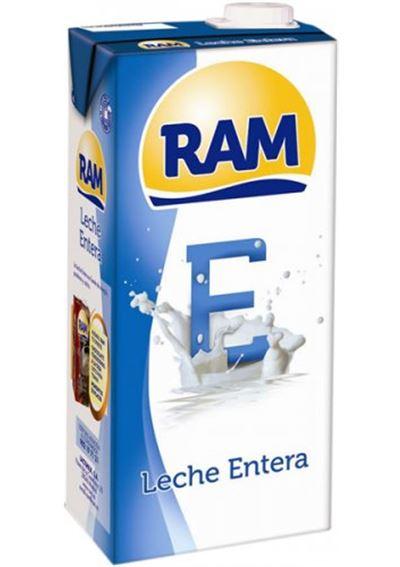 RAM BRIK E
